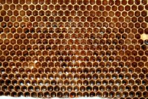 Eļļas vasks mēbelēm ar dabīgo bišu vasku