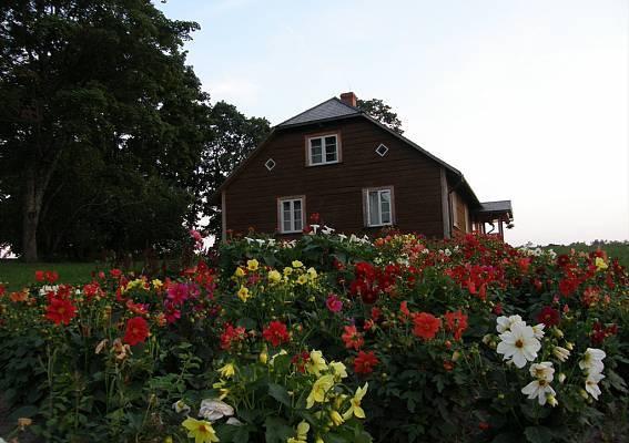 Švediški dažai rudas