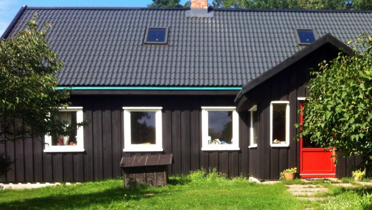 Zviedru krāsa melna