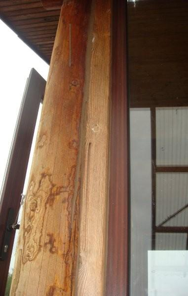 Sealant for log houses GULBUVE walnut