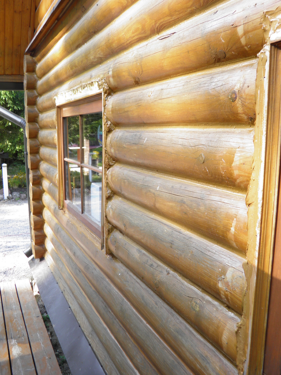 Sealant for log houses GULBUVE oregoni