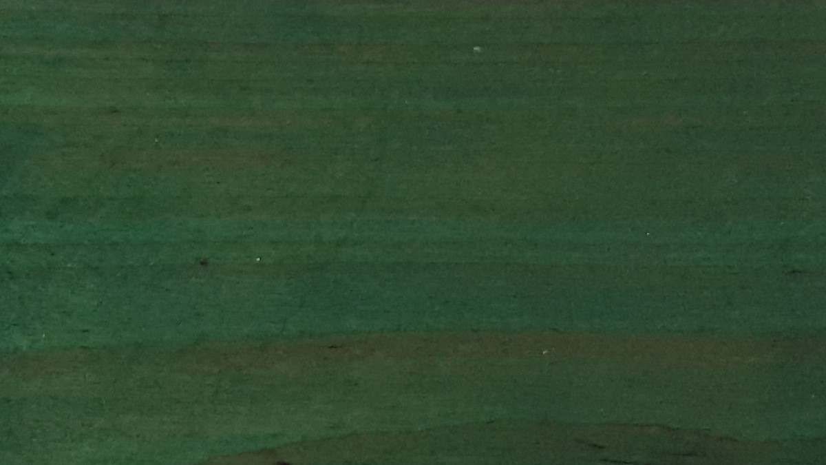 Painted with NATURA green thermowood