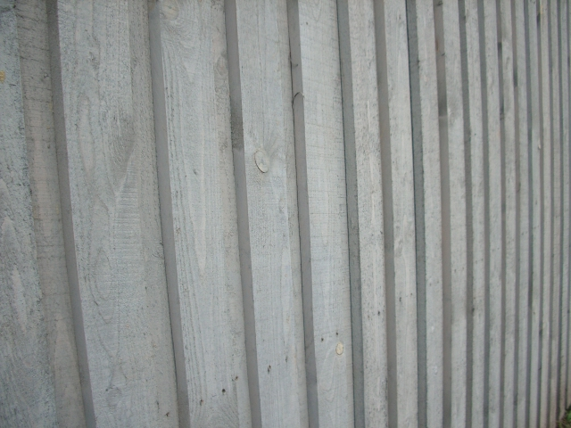 Linų sėmenų dažai NATURA sidabro pilkumo